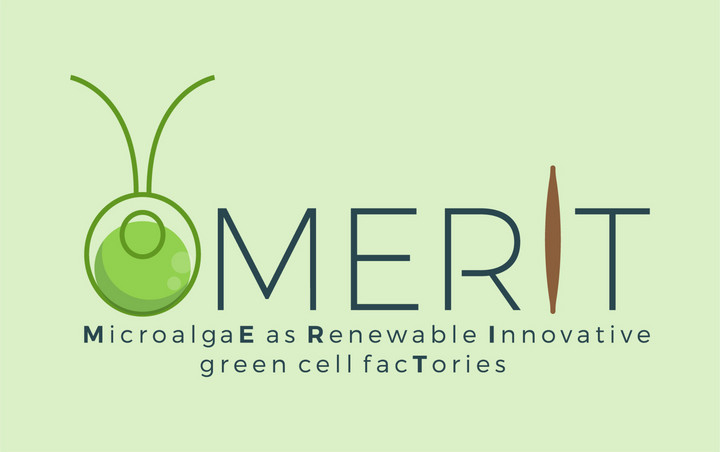 The MERIT project - MircoalgaE Renewable Innovative green cell facTories